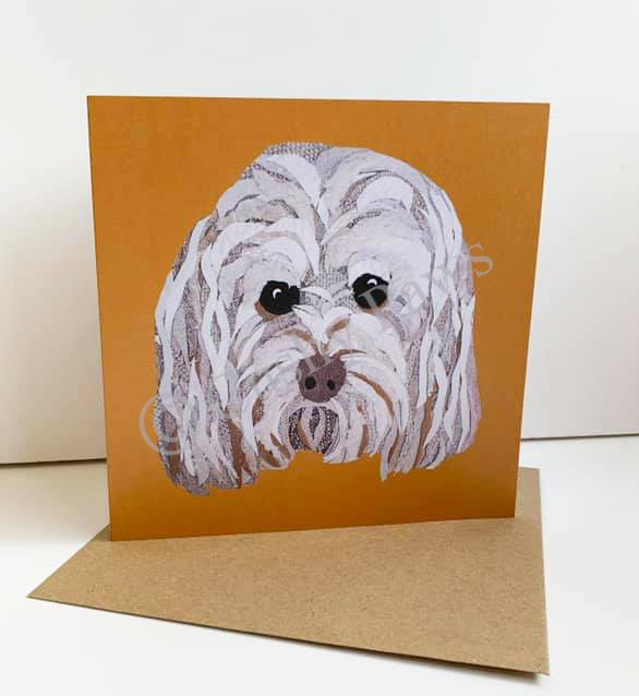 Cockapoo Dog breed card