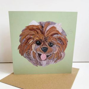 Pomeranian Dog Breed card