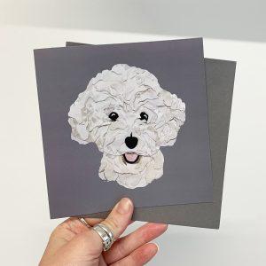 bichon card